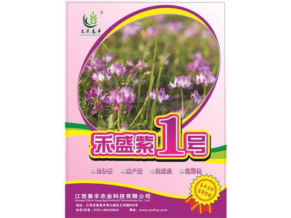 禾盛紫1號